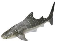 Schleich 16089 Walhai