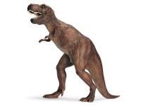 Schleich 16454 Tyrannosaurus Rex
