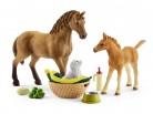 Schleich 42432 Tierbaby-Pflege Set - Quarter Horse