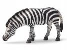 Schleich 14609 Zebra, grasend